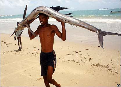 A Somali fisherman carries a swordfish on his head on the beach in the southern city Kismayo, Somalia.