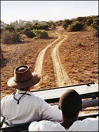Tourists in Kenya