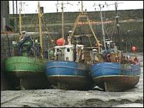 Fishing trawlers in harbour