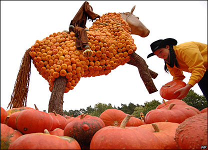 Stefani Witt from Buschmann-Winkelmann farm in Klaistow, Germany, sorts pumpkins for the opening of a pumpkin exhibition