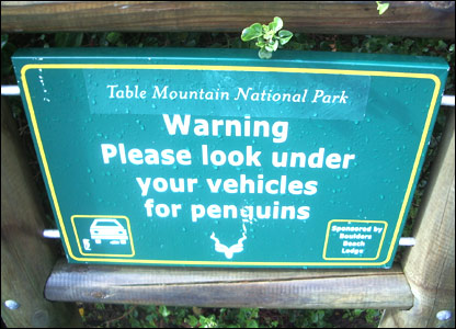http://newsimg.bbc.co.uk/media/images/44118000/jpg/_44118825_penguins_sign.jpg