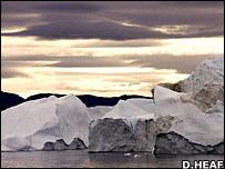Greenland ice. Image: Daniel Heaf