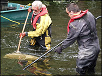 Environment Agency team search for surviving fish