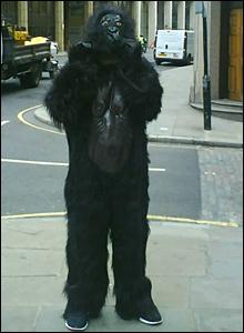 Huzefa Ishaki in gorilla suit. Copyright: Nili Pabari