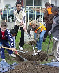 Children plant a tree