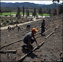Lumberjacks work on the burnt ancient Hill of Kronos