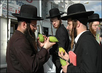 In particular, the etrog must be blemish-free. If the fragile stem, or pitom, is damaged at any time, the etrog is rendered useless.