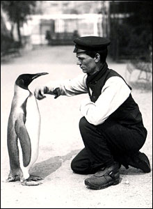 Keeper with penguin, 1914