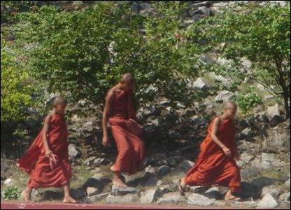 Niños monjes corretean por una ladera  / Foto: R. Trost