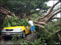 A car is crushed by a huge tree uprooted by Typhoon Krosa, in Taipei