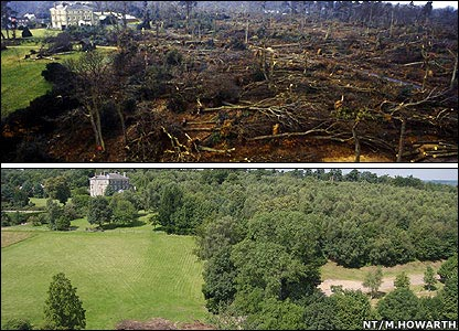 Emmetts Garden, near Sevenoaks, Kent, lost 95% of its mature trees (top)