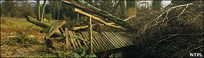Damage caused by the Great Storm (Image: NTPL)