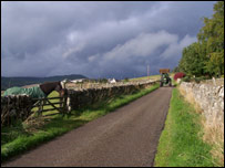 Tractor in country lane. Pic by Christina Ross, from Alness