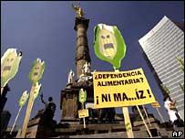 Activistas de Greenpeace protestan en la Ciudad de México contra la importación de maíz transgénico. Martes  16 de octubre de 2007