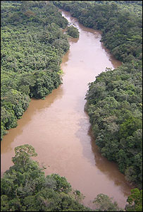 Forest and river in Liberia (Image: Richard Black)