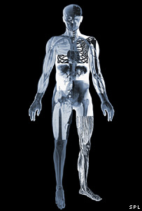 Scans of the body