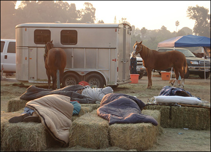Owners wait with their horses.  Photo: Kay Taylor
