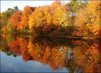 Fall colours in New England
