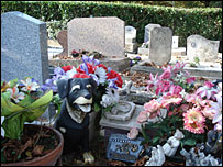 The dog cemetery