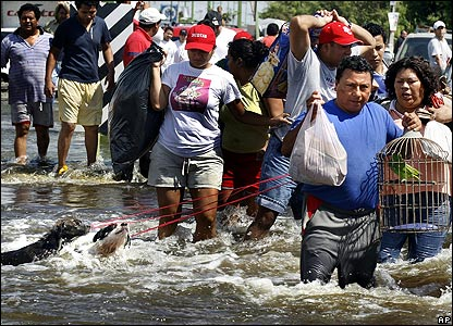 A man rescues a parrot and two dogs from flood waters in Tabasco