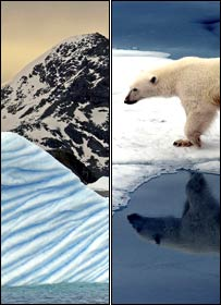Ant�rtida a la izquierda y oso polar en el �rtico a la derecha.