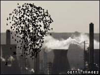 Oil refinery. Image: Getty