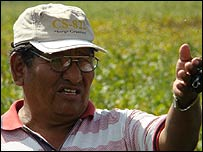 Pascual Arellano medium soy producer looking at his crop in Chane Independencia Northern Santa Cruz