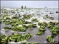 Bananas lie on a beach on Terschelling island on 7 November 2007