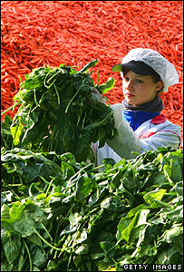 Woman working with a crop of carrots (Getty Images)