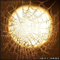 Sun seen through spider web. Image: Getty