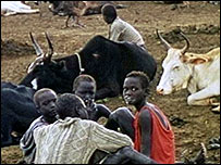 People near cattle in Sudan