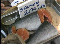 Salmon (VT freeze frame)