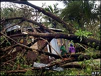 A fallen tree has destroyed a house in Mongla