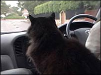 Sgt Podge going home by car