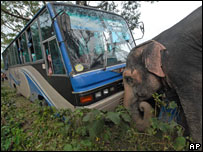 An elephant pushes a stranded bus in Barisal, 16 November 2007