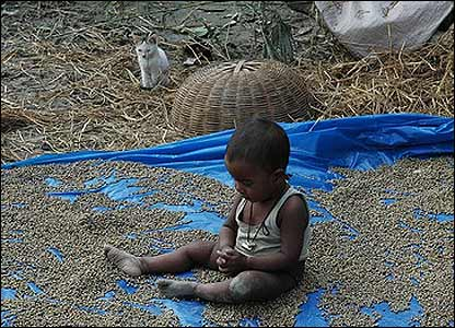Boy on a rice mat after the cyclone