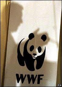 Panda logo. Image: PA