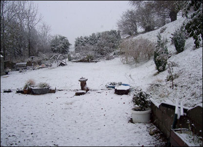 This is a picture of Marjorie Robinson's garden in New Radnor on Sunday afternoon.