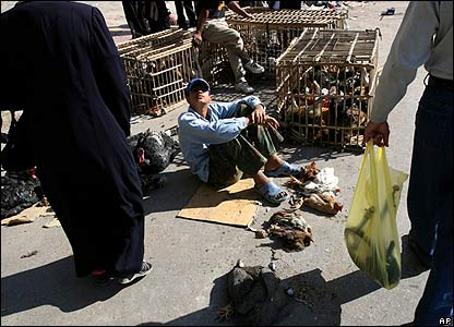 A man sells chicken at the Ghazil market