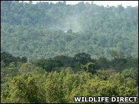 Smoke from a charcoal kiln (Image: WildlifeDirect)