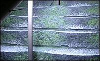 Jacob's Ladder at night