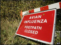 Bird flu warning sign