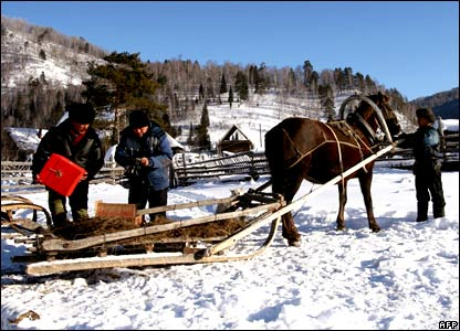 Members of an electoral voting commission use a horse to go house-to-house with ballots for villagers in the remote Siberian village of Shor-Taiga some 4000 km east of Moscow