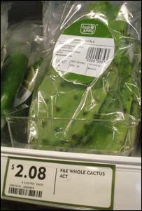 Cactus on sale