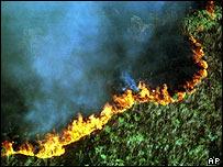 Deforestación en el estado brasileño de Río de Janeiro, 1999