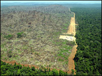 Aerial view of deforestation in Brazil, picture by Greenpeace