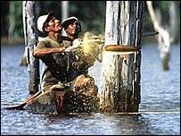 Loggers in Brazil