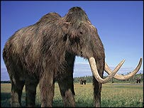 Artist's impression of mammoth (BBC)