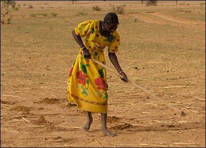 A woman in Darfur, Sudan, digging holes in dry earth for seeds (Photo by BBC News website readers Fred and Aileen Knip)