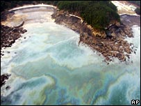 Oil washes ashore